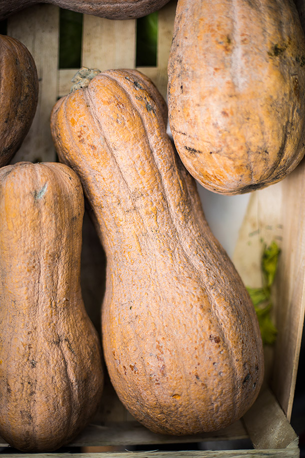 Butternut-Squash-at-paris-market