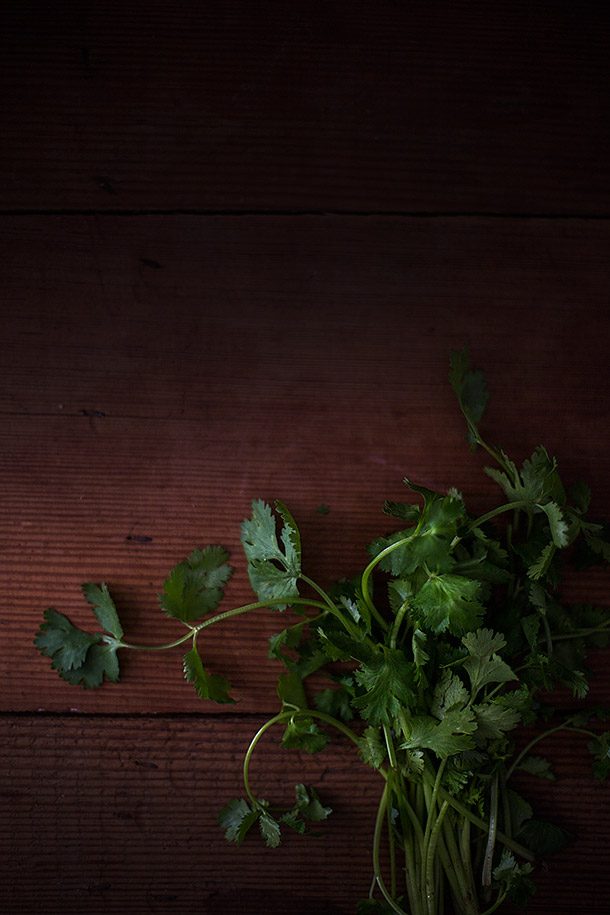 Cilantro-for-salad